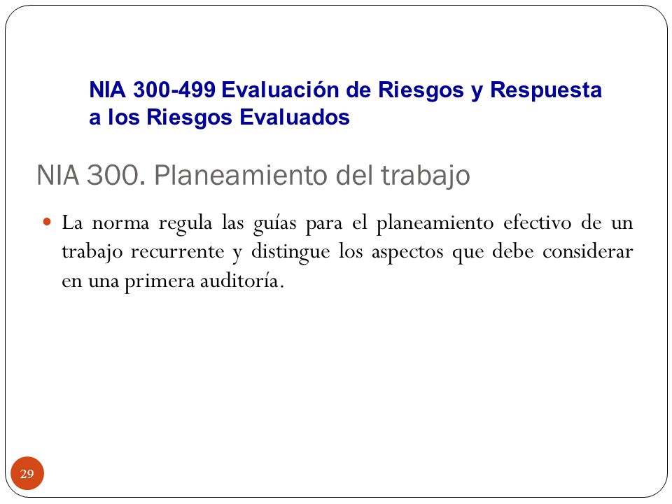 NIA 300. Planeamiento del trabajo