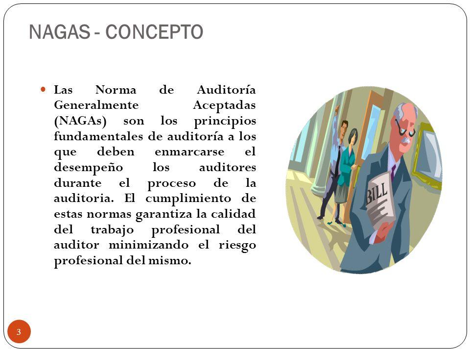 NAGAS - CONCEPTO