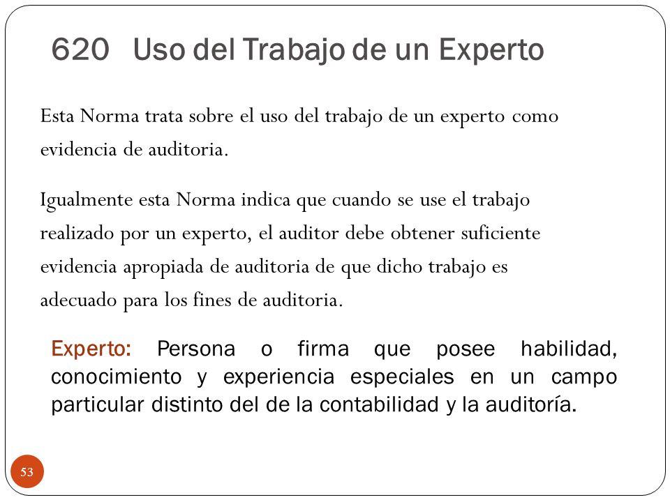 620 Uso del Trabajo de un Experto