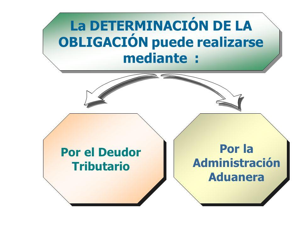 La DETERMINACIÓN DE LA OBLIGACIÓN puede realizarse mediante :