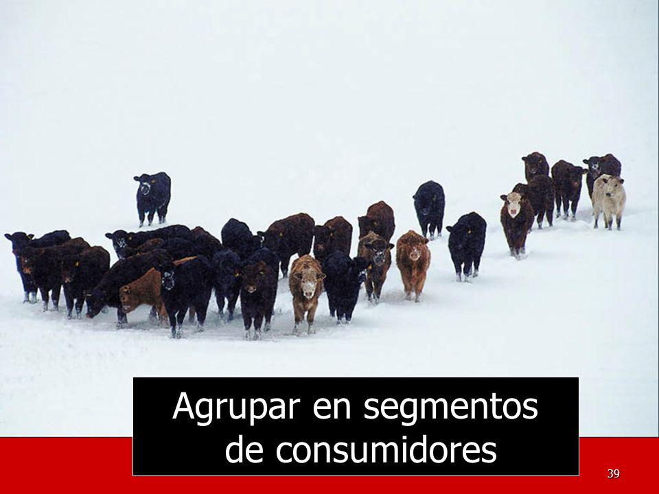 Agrupar en segmentos de consumidores