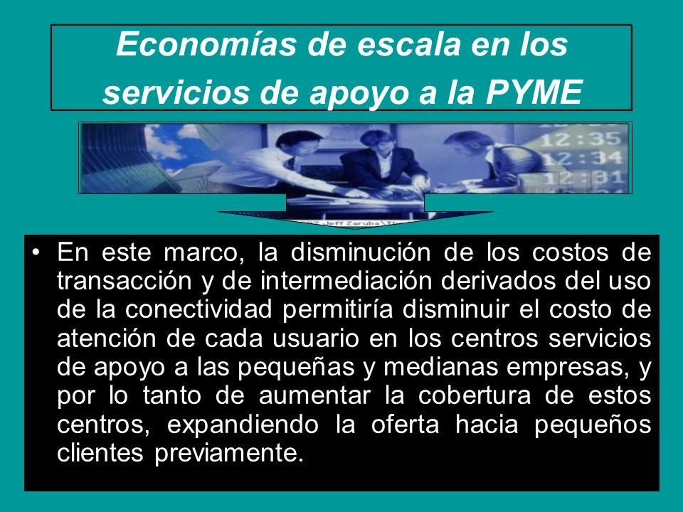 Economías de escala en los servicios de apoyo a la PYME