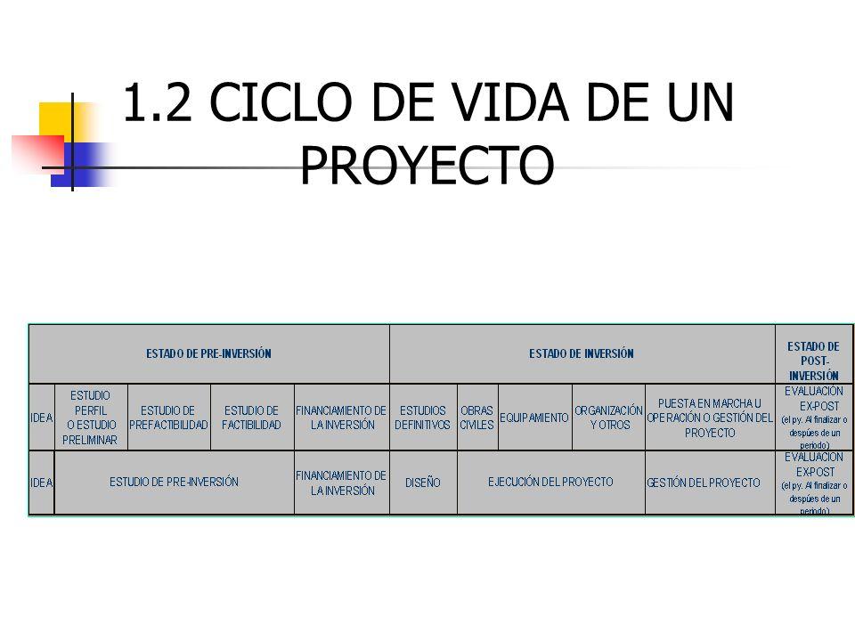 1.2 CICLO DE VIDA DE UN PROYECTO