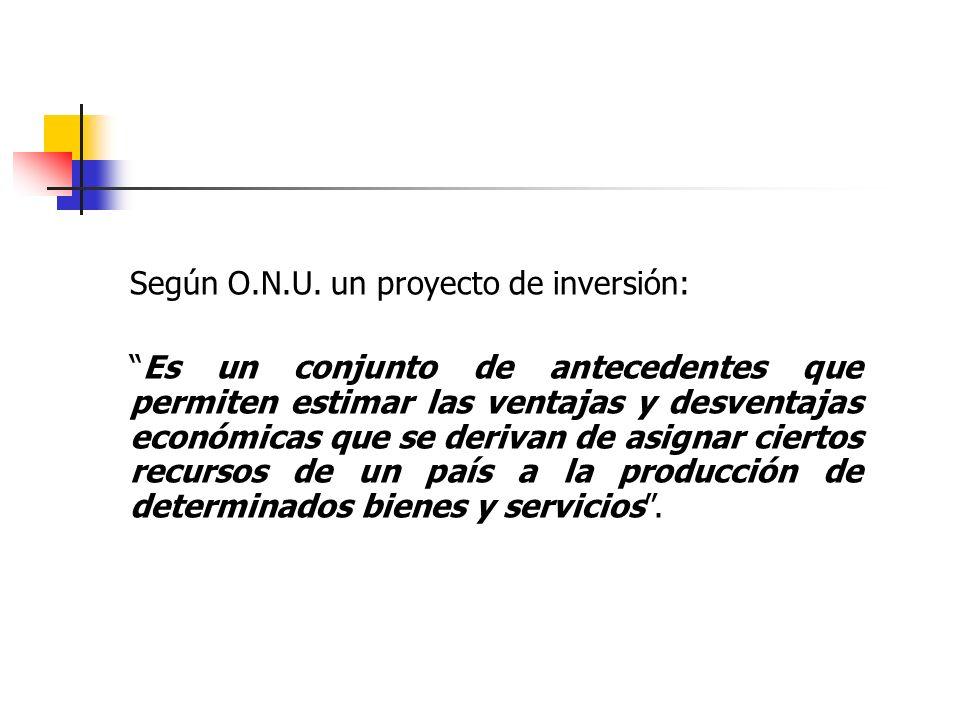 Según O.N.U. un proyecto de inversión: