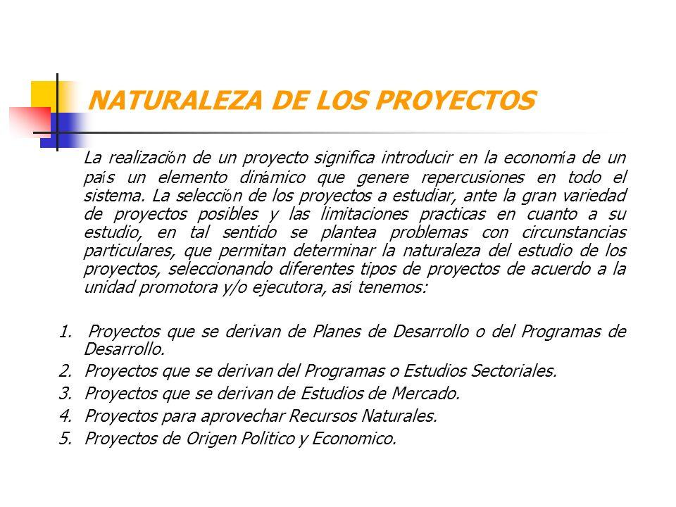 NATURALEZA DE LOS PROYECTOS