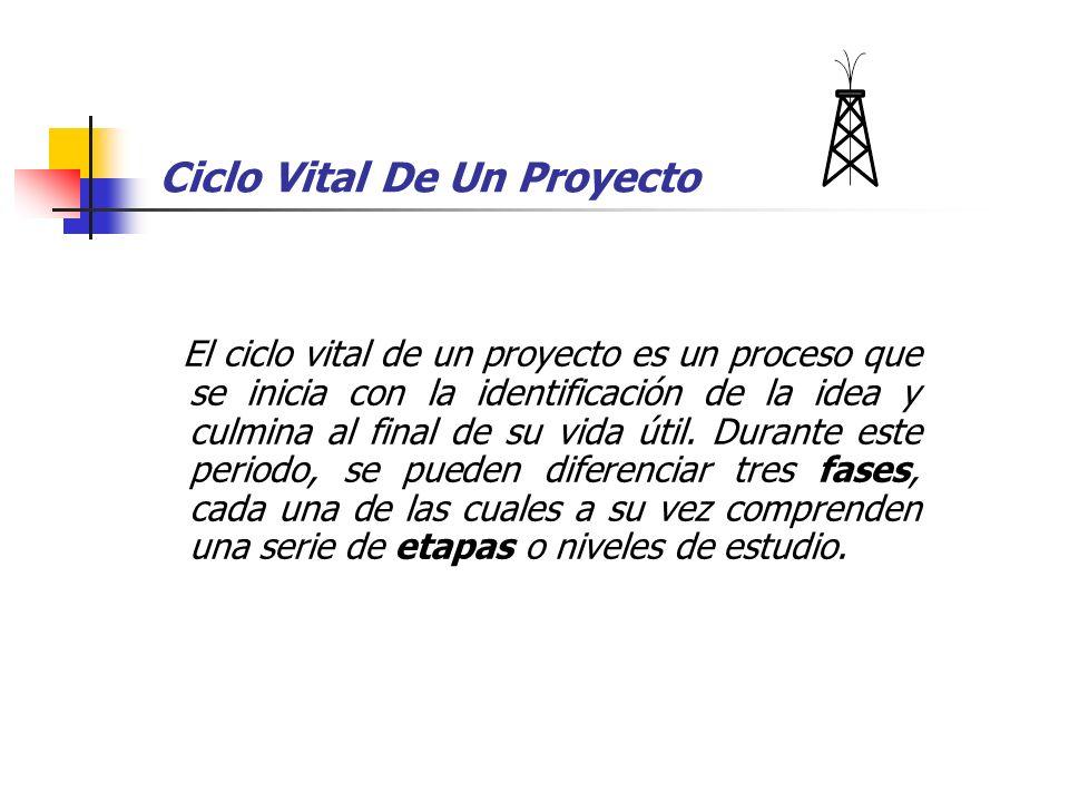 Ciclo Vital De Un Proyecto