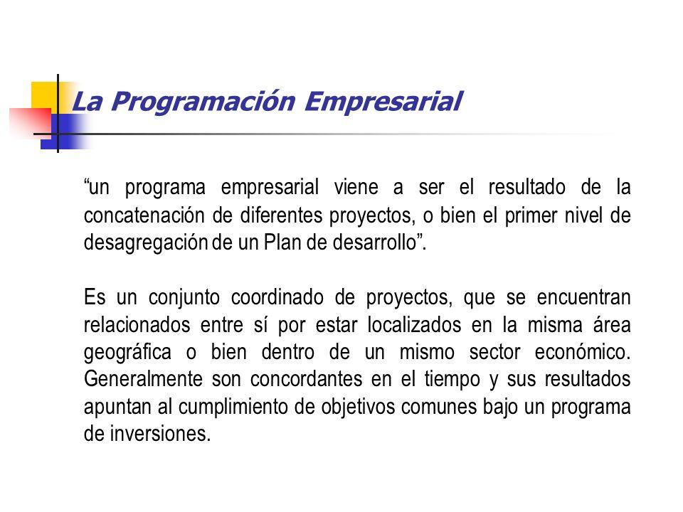 La Programación Empresarial
