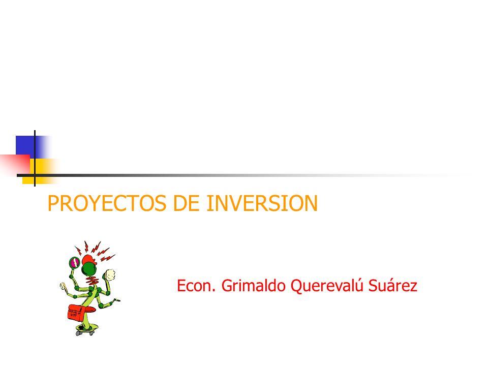 PROYECTOS DE INVERSION