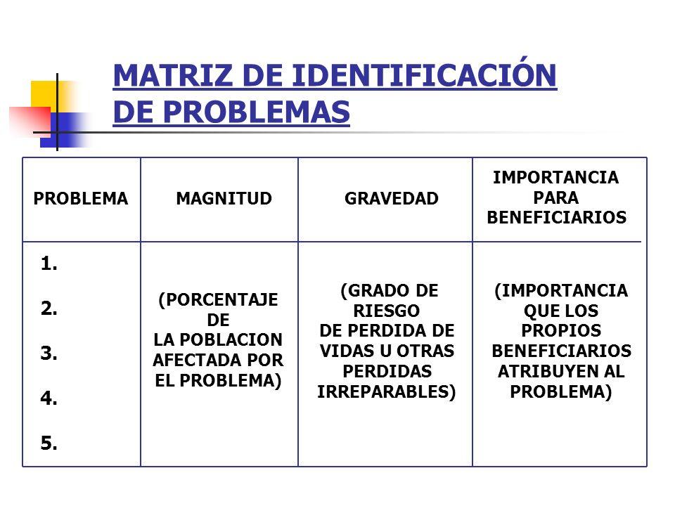 MATRIZ DE IDENTIFICACIÓN DE PROBLEMAS