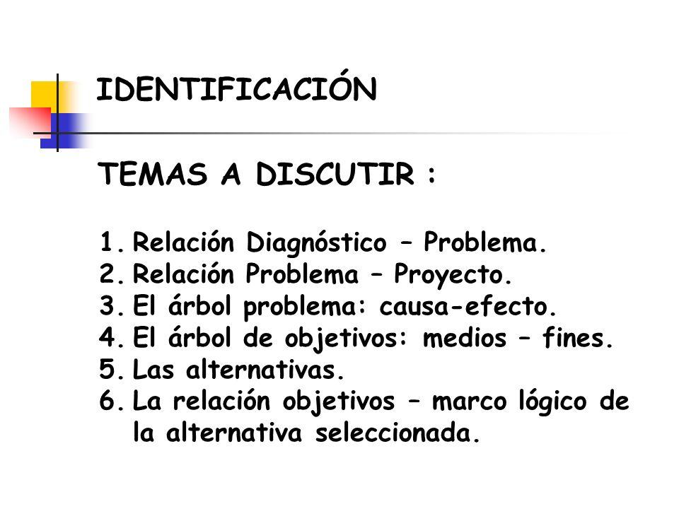 IDENTIFICACIÓN TEMAS A DISCUTIR : Relación Diagnóstico – Problema.