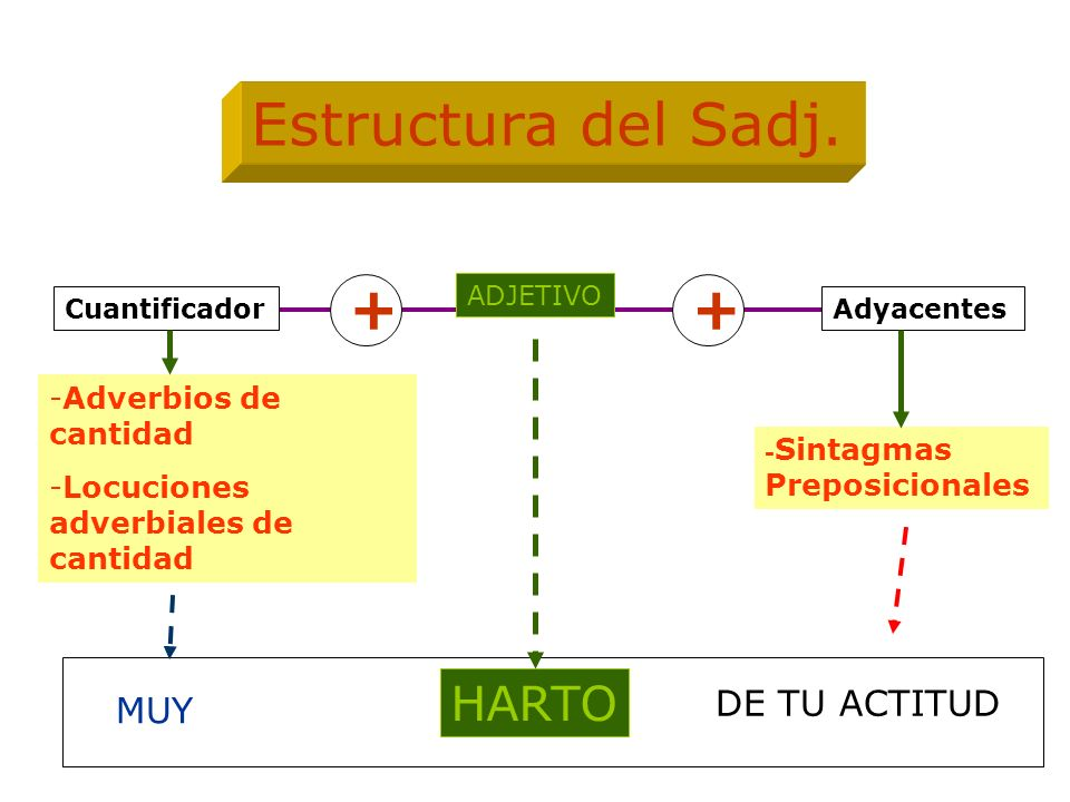 Estructura del Sadj. + + HARTO DE TU ACTITUD MUY Adverbios de cantidad