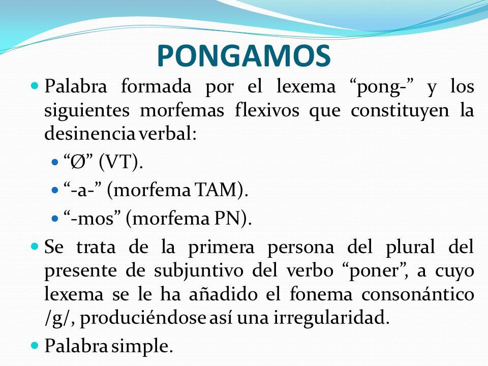 PONGAMOS Palabra formada por el lexema pong- y los siguientes morfemas flexivos que constituyen la desinencia verbal: