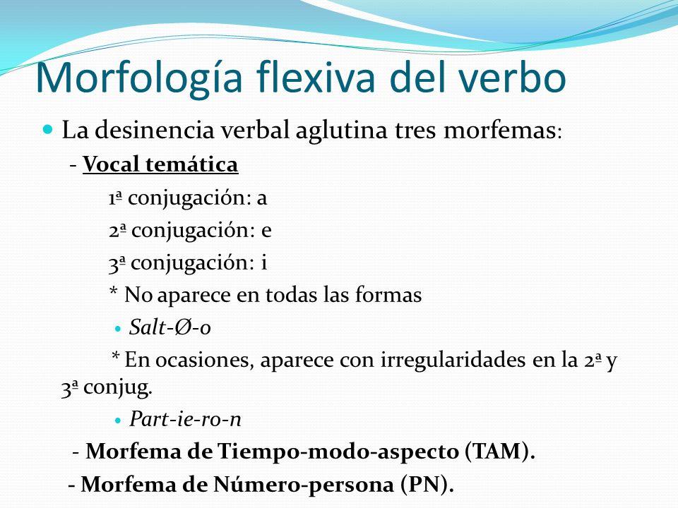 Morfología flexiva del verbo