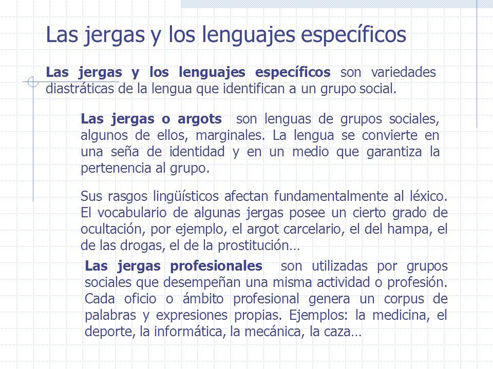 Las jergas y los lenguajes específicos