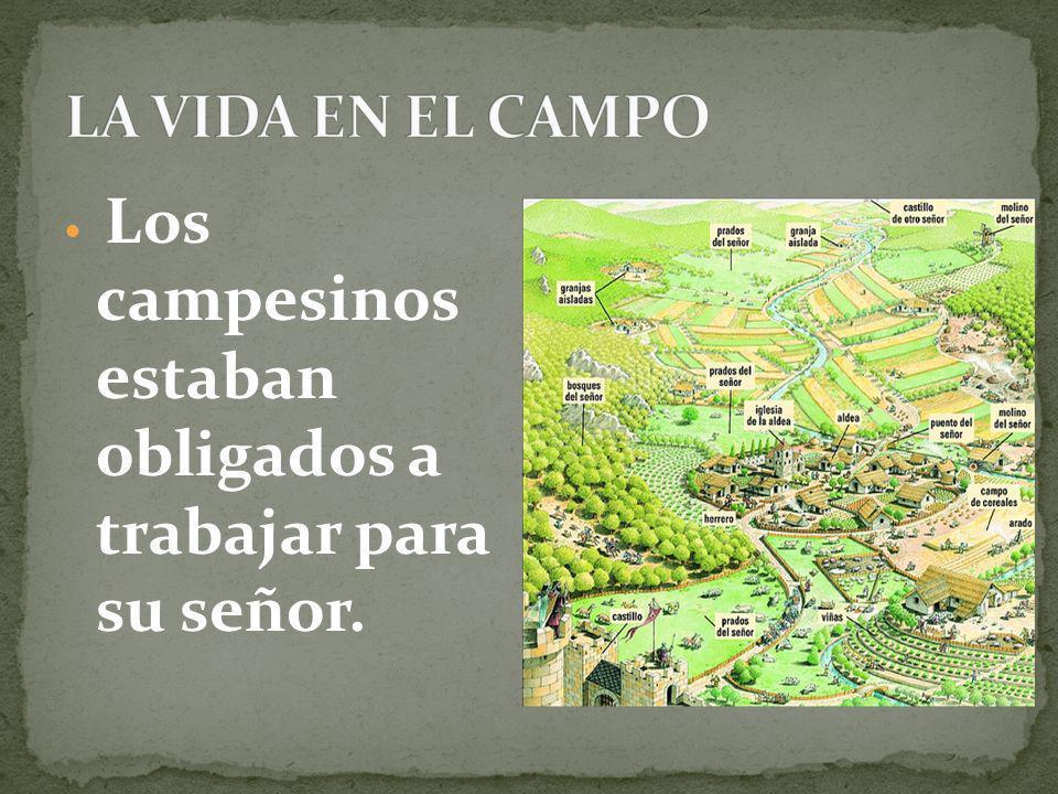 LA VIDA EN EL CAMPO Los campesinos estaban obligados a trabajar para su señor.
