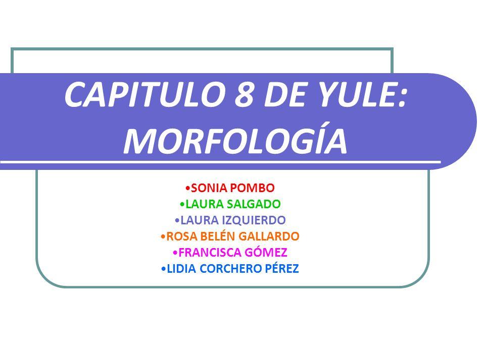 CAPITULO 8 DE YULE: MORFOLOGÍA