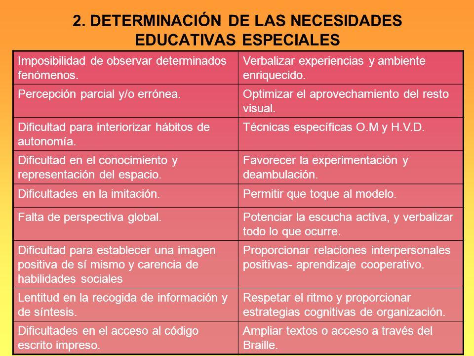 2. DETERMINACIÓN DE LAS NECESIDADES EDUCATIVAS ESPECIALES