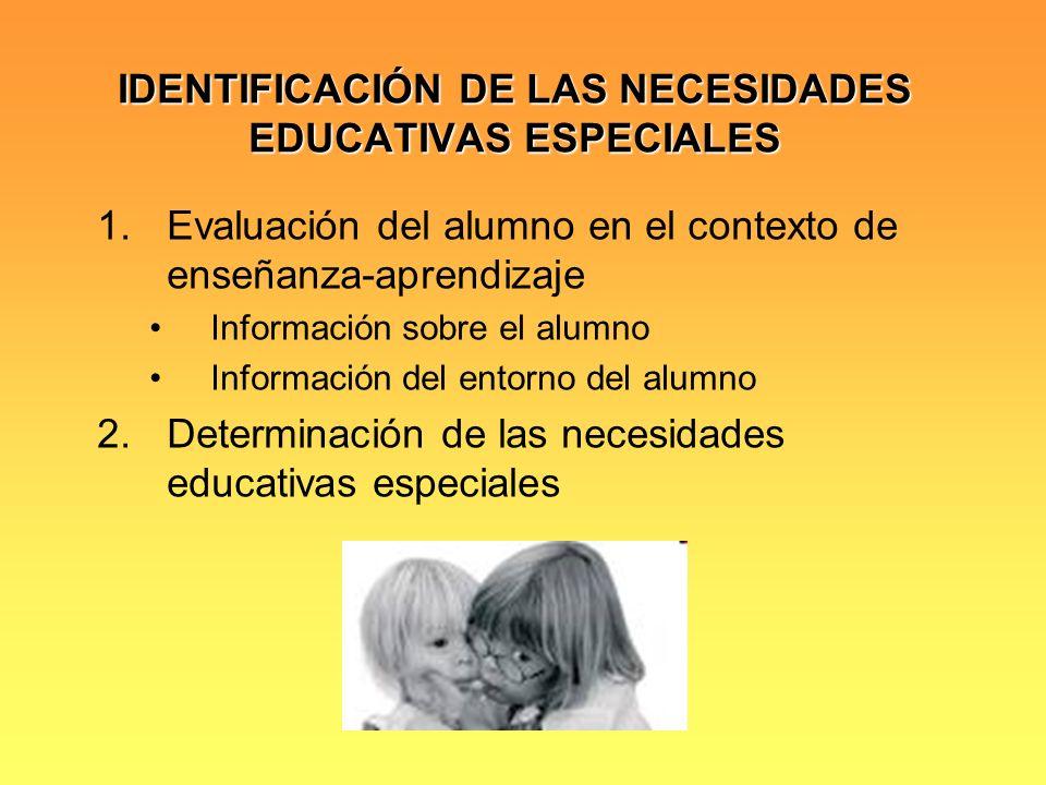 IDENTIFICACIÓN DE LAS NECESIDADES EDUCATIVAS ESPECIALES