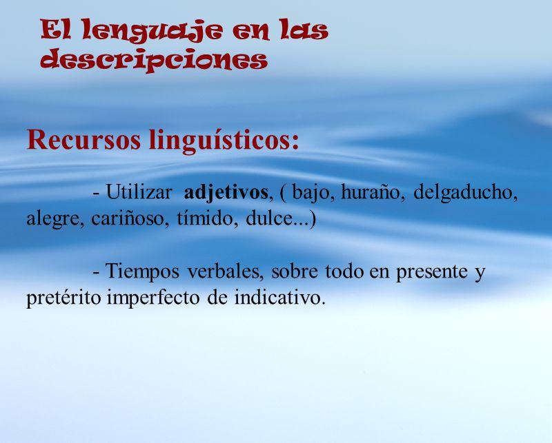 Recursos linguísticos: