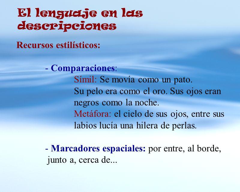 El lenguaje en las descripciones