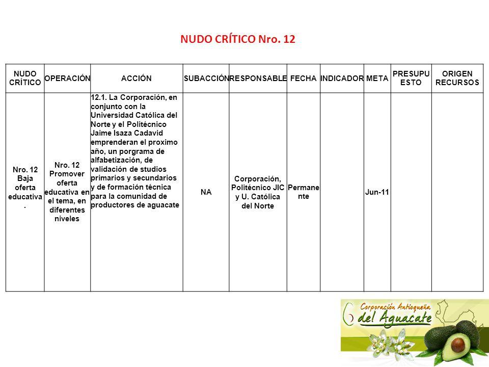 NUDO CRÍTICO Nro. 12 NUDO CRÍTICO OPERACIÓN ACCIÓN SUBACCIÓN