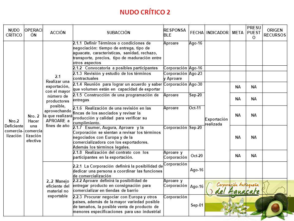 NUDO CRÍTICO 2 NUDO CRÍTICO OPERACIÓN ACCIÓN SUBACCIÓN RESPONSABLE