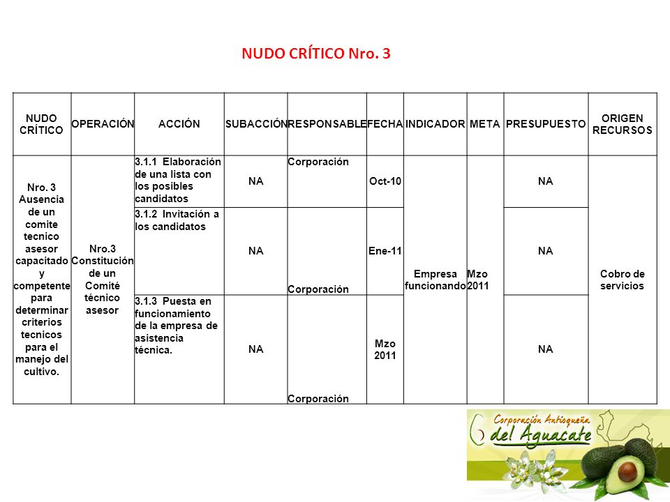 Nro.3 Constitución de un Comité técnico asesor