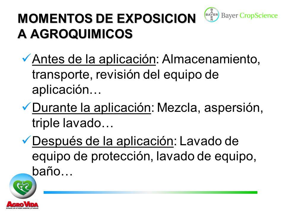 MOMENTOS DE EXPOSICION A AGROQUIMICOS