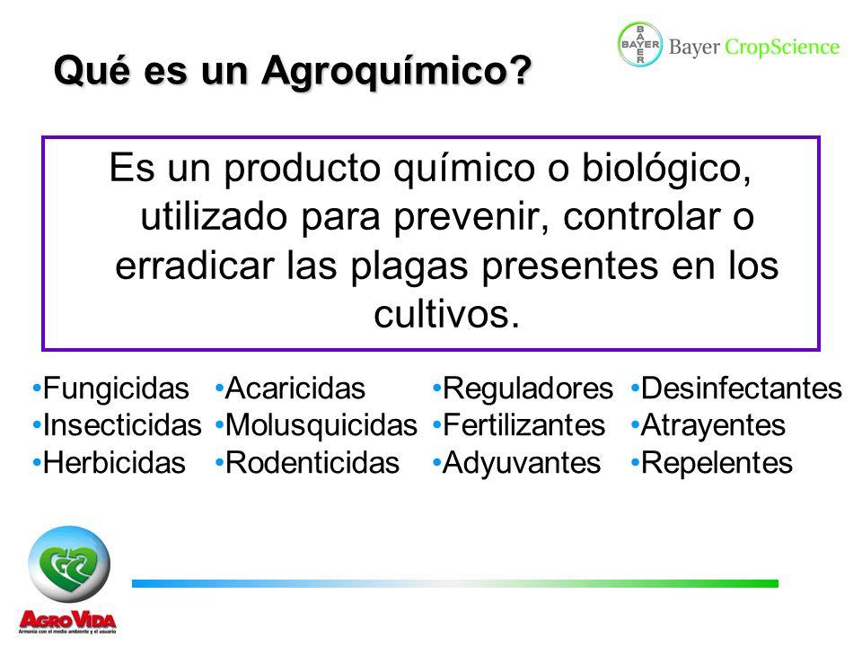 Qué es un Agroquímico Es un producto químico o biológico, utilizado para prevenir, controlar o erradicar las plagas presentes en los cultivos.