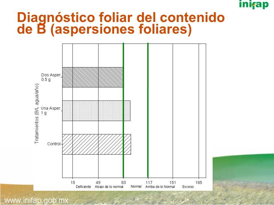 Diagnóstico foliar del contenido de B (aspersiones foliares)