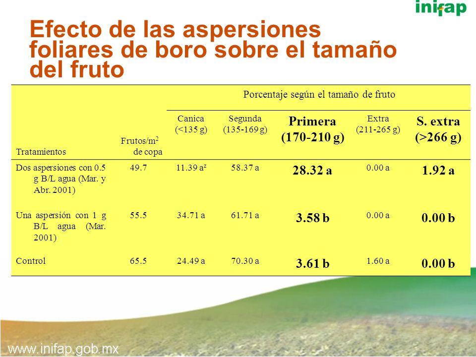 Efecto de las aspersiones foliares de boro sobre el tamaño del fruto
