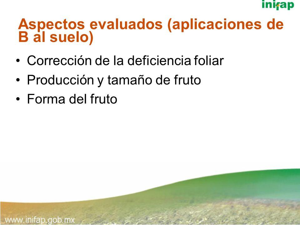 Aspectos evaluados (aplicaciones de B al suelo)