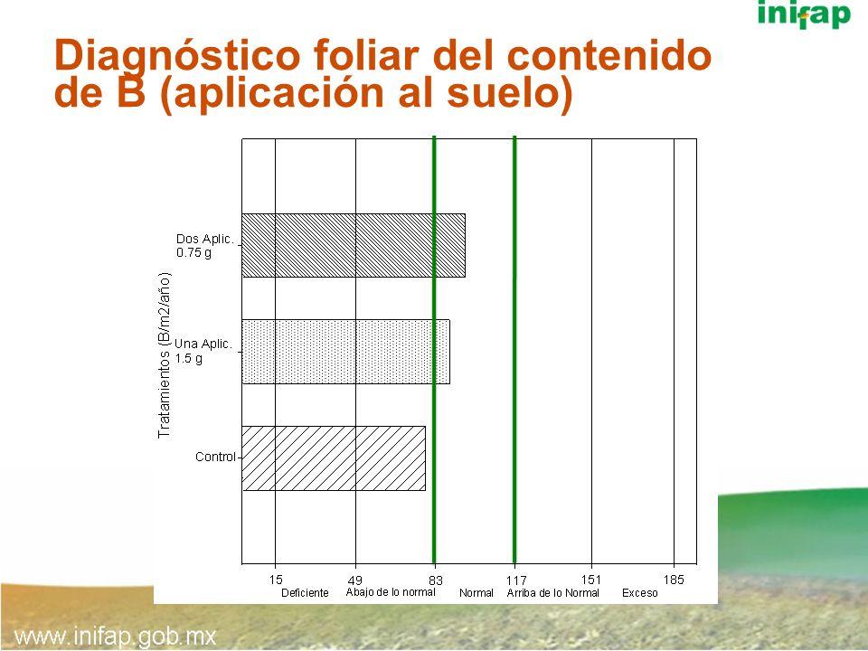 Diagnóstico foliar del contenido de B (aplicación al suelo)