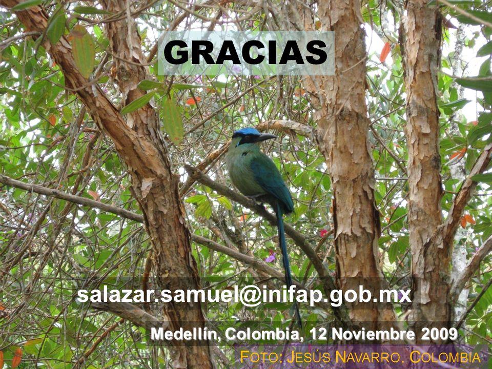 GRACIAS Gracias ! salazar.samuel@inifap.gob.mx