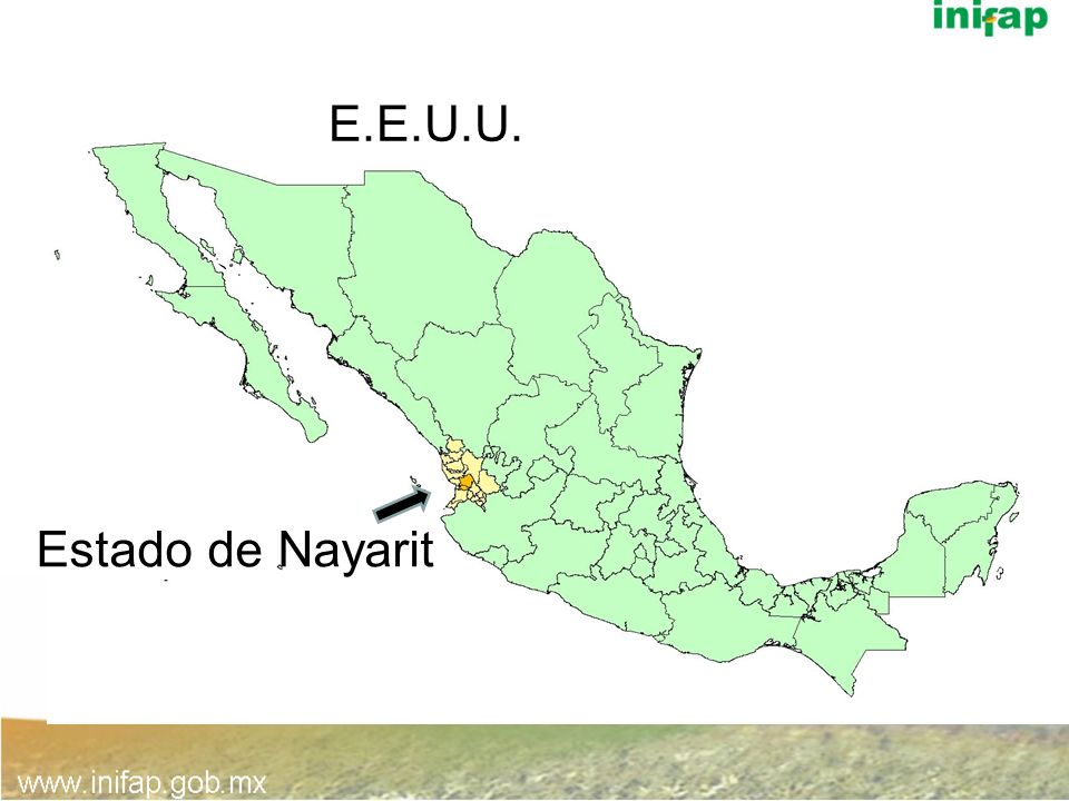 E.E.U.U. Xalisco Estado de Nayarit