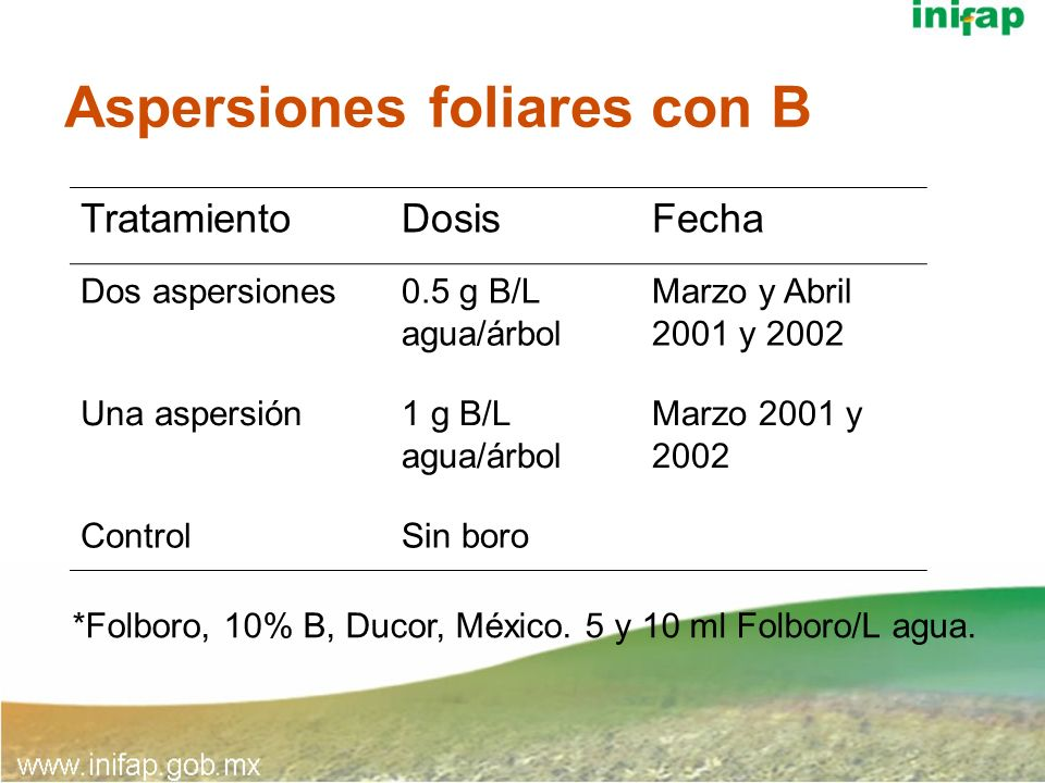 Aspersiones foliares con B