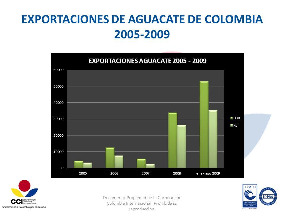EXPORTACIONES DE AGUACATE DE COLOMBIA