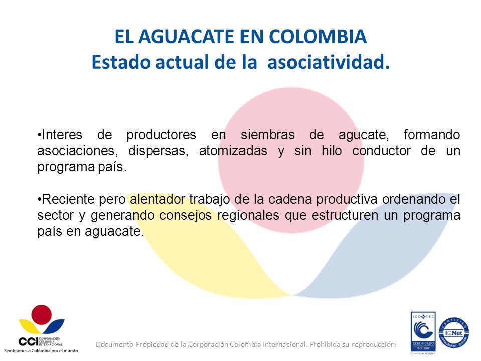 EL AGUACATE EN COLOMBIA Estado actual de la asociatividad.