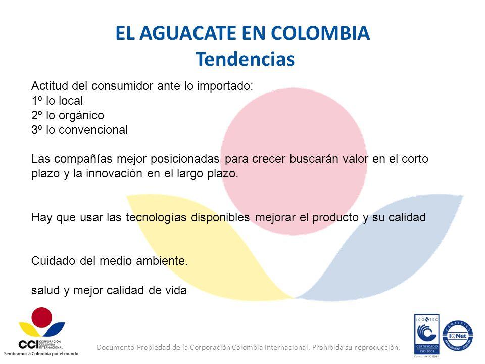 EL AGUACATE EN COLOMBIA