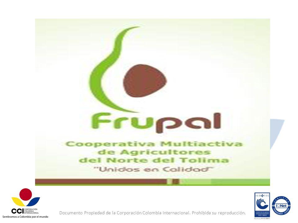 Documento Propiedad de la Corporación Colombia Internacional
