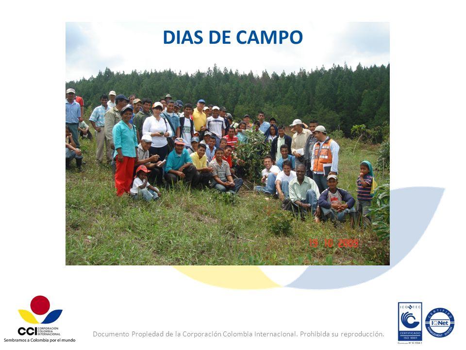 DIAS DE CAMPO Documento Propiedad de la Corporación Colombia Internacional.