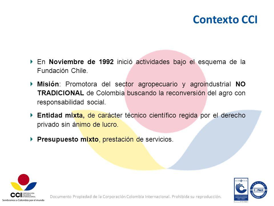 Contexto CCI En Noviembre de 1992 inició actividades bajo el esquema de la Fundación Chile.