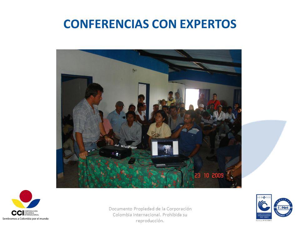 CONFERENCIAS CON EXPERTOS