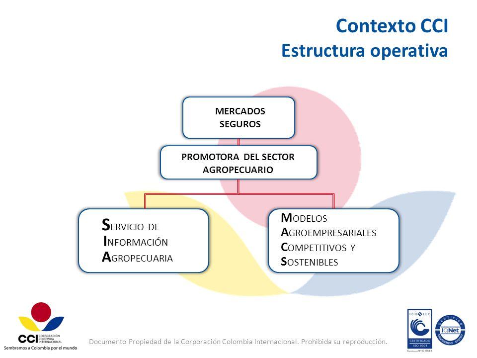 Contexto CCI Estructura operativa