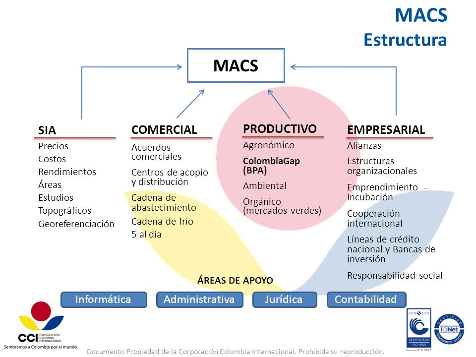 MACS Estructura MACS SIA COMERCIAL EMPRESARIAL PRODUCTIVO Informática