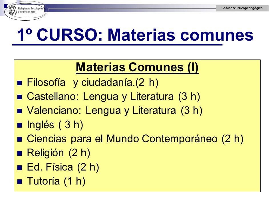 1º CURSO: Materias comunes