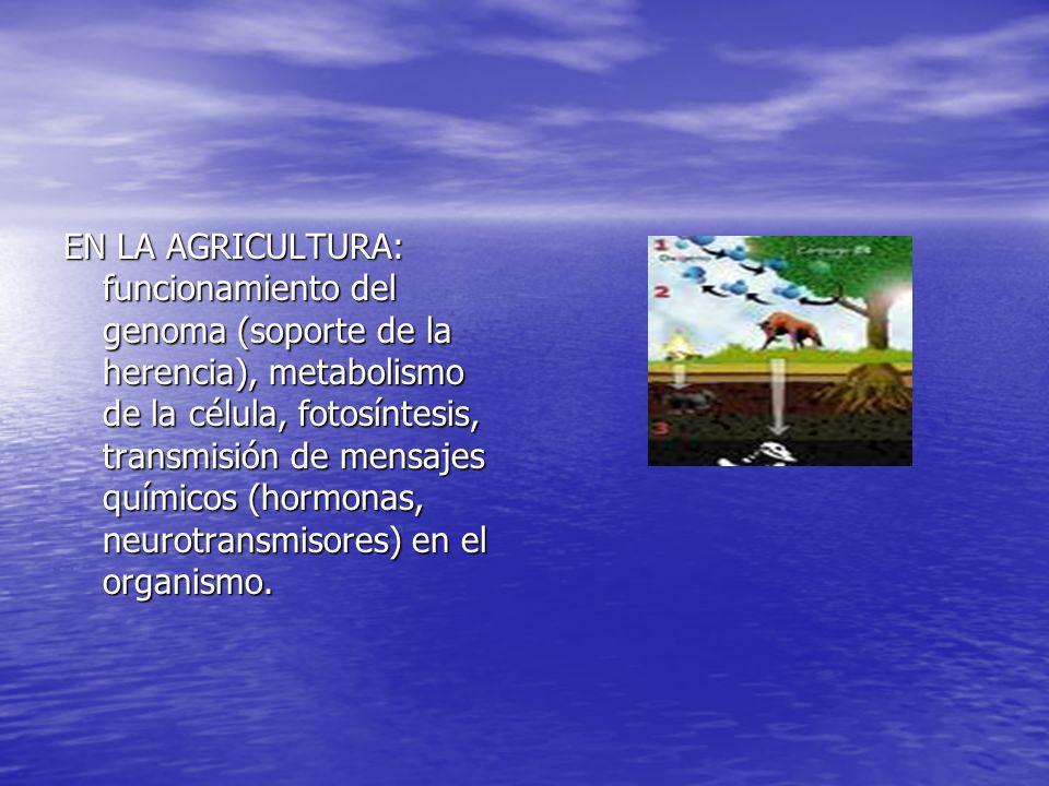 EN LA AGRICULTURA: funcionamiento del genoma (soporte de la herencia), metabolismo de la célula, fotosíntesis, transmisión de mensajes químicos (hormonas, neurotransmisores) en el organismo.