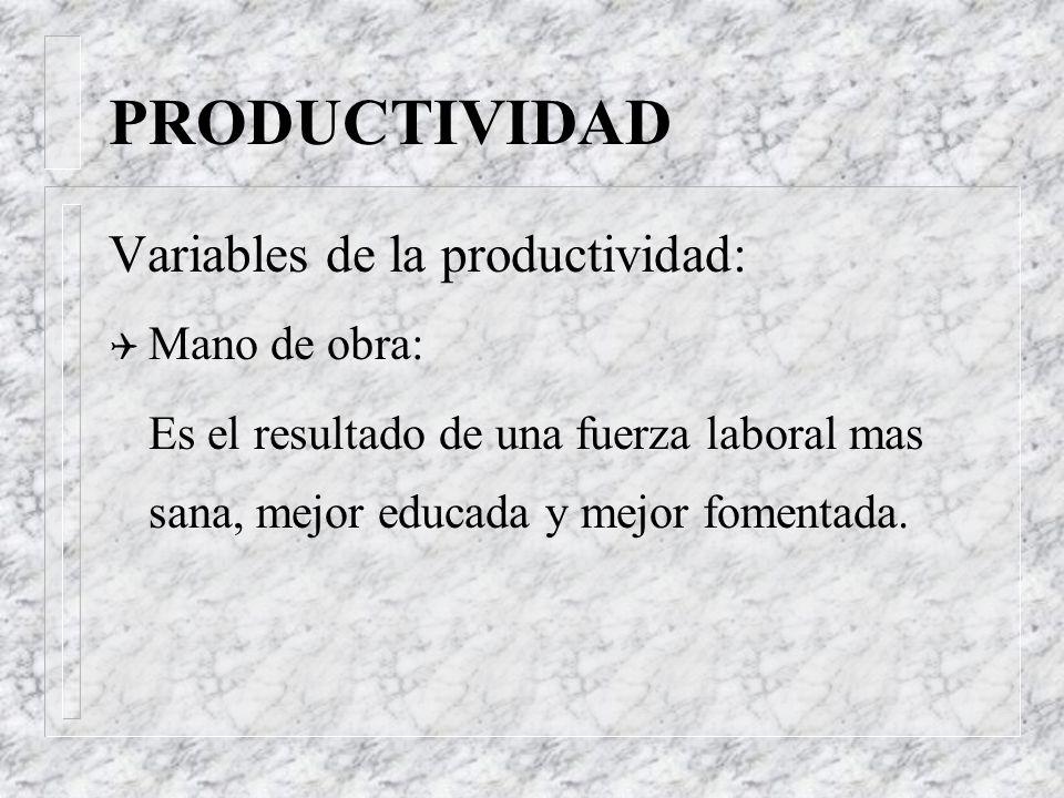 PRODUCTIVIDAD Variables de la productividad: Mano de obra: