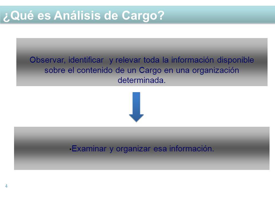 Examinar y organizar esa información.