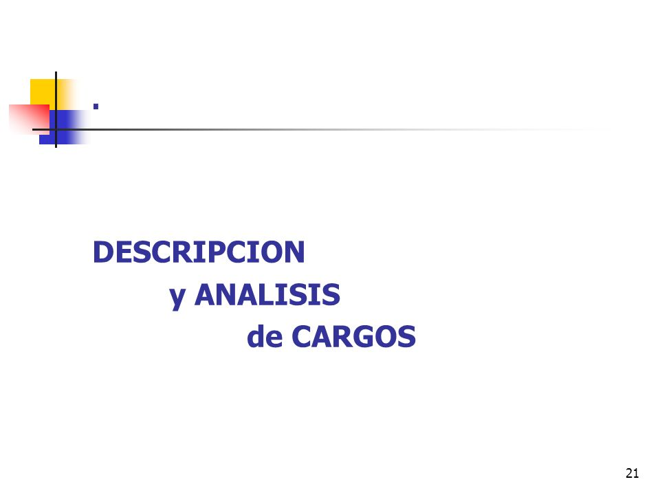 . DESCRIPCION y ANALISIS de CARGOS